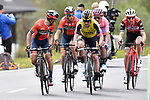 The group of main favourites with Vincenzo Nibali (ITA) Bahrain-Merida, Primoz Roglic (SLO) Team Jumbo-Visma, Maglia Rosa Richard Carapaz (ECU) Movistar Team and Bauke Mollema (NED) Trek-Segafredo on the final climb during Stage 17 of the 2019 Giro d'Italia, running 181km from Commezzadura (Val di Sole) to Anterselva / Antholz, Italy. 29th May 2019<br /> Picture: Fabio Ferrari/LaPresse | Cyclefile<br /> <br /> All photos usage must carry mandatory copyright credit (© Cyclefile | Fabio Ferrari/LaPresse)