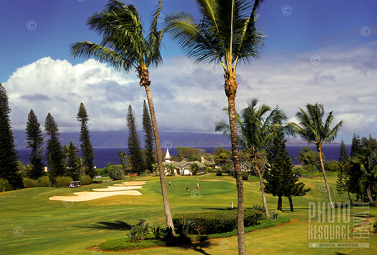 Golfers out on the putting green with palm trees and ocean view at Kapalua golf course, Maui. View of Lanai island in rear