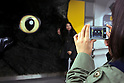 A woman takes a picture of a big cat face on display in Shibuya station on April 5, 2015, Tokyo, Japan. The Japanese courier service Yamato Transport Co., LTD. is using this innovative display to promote its two new services for small packages from April 1st. (Photo by Rodrigo Reyes Marin/AFLO)