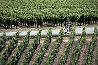 Polka Dot Jersey / KOM leader Tim Wellens (BEL/Lotto Soudal) rolling through the vineyards. <br /> <br /> Stage 5: Saint-Dié-des-Vosges to Colmar (175km)<br /> 106th Tour de France 2019 (2.UWT)<br /> <br /> ©kramon