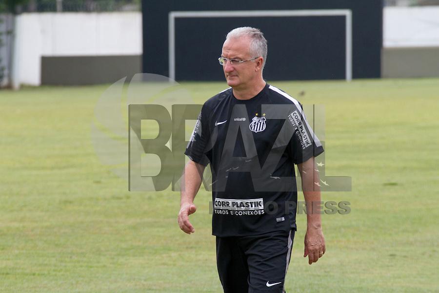 SANTOS, SP, 17.11.2015 - FUTEBOL-SANTOS - Dorival Jr. do Santos durante sessão de treinamento no Centro de Treinamento Rei Pelé nesta terça-feira, 17. (Foto: Flavio Hopp / Brazil Photo Press)