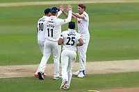 Matt Quinn of Essex celebrates taking the wicket of George Bailey during Essex CCC vs Hampshire CCC, Specsavers County Championship Division 1 Cricket at The Cloudfm County Ground on 21st May 2017