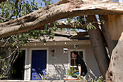 April 17, 2011. Raleigh, NC.. Carpenter Ryan Carlson sits on his front porch underneath a tree that landed on his roof and that of his neighbor..  A record 92 tornadoes tore through North Carolina on April 16, 2011, killing at least 22 people and injuring more than 80 others. Damage to the city of Raleigh was extensive, with much of it concentrated in the Oakwood neighborhood on the edge of downtown..