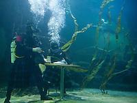25/01/2012 Deep Sea Burns