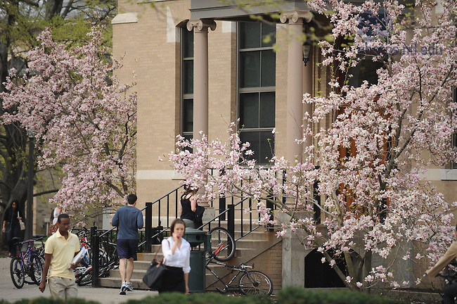 Outside LaFortune Hall in spring