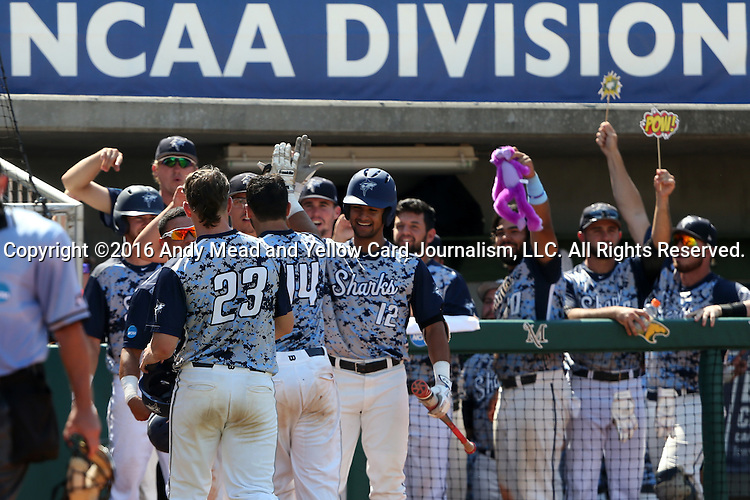 02 June 2016: Nova Southeastern's Jake Anchia (14) is congratulated for hitting a home run by Sebastian Diaz (12), Daniel Zardon (23) and other teammates. The Nova Southeastern University Sharks played the Cal Poly Pomona Broncos in Game 11 of the 2016 NCAA Division II College World Series  at Coleman Field at the USA Baseball National Training Complex in Cary, North Carolina. Nova Southeastern won the semifinal game 4-1 and advanced to the championship series.