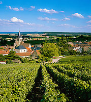 France, Département Marne, Champagne, Ville-Dommange: wine village | Frankreich, Département Marne, Champagne, Ville-Dommange: Weindorf