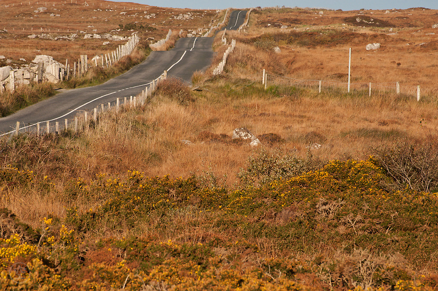 A road cuts across the autumnal upland landscape between Galway and Connemara, Ireland.