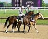 winning at Delaware Park on 5/29/10
