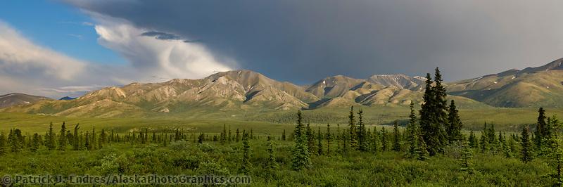 Sunset over the foothills of the Alaska Range, Denali National Park, Interior, Alaska