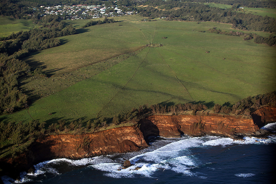 An aerial view of one of Ponoholo Ranch's grazing areas which is in a wagon-wheel configuration right next to the Kohala coast.  Fences radiate out from it like spokes of a wagon wheel, with each wedge allowing cattle to have access to the centrally located water source.  The cattle are moved from wedge to wedge, allowing the grass to regrow.