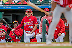 24 February 2019: St. Louis Cardinals outfielder Harrison Bader looks out from the dugout during a Spring Training game against the Washington Nationals at Roger Dean Stadium in Jupiter, Florida. The Cardinals fell to the Nationals 12-2 in Grapefruit League play. Mandatory Credit: Ed Wolfstein Photo *** RAW (NEF) Image File Available ***