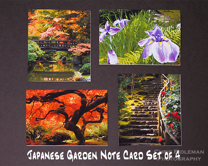 "Japanese Garden note cards.  Set of 4 cards that are 4.25"" x 5.5"" in size.  Blank inside and includes mailing envelope."