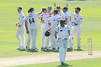 Sam Cook of Essex celebrates with his team mates after taking the wicket of Tim Bresnan during Essex CCC vs Yorkshire CCC, Specsavers County Championship Division 1 Cricket at The Cloudfm County Ground on 4th May 2018