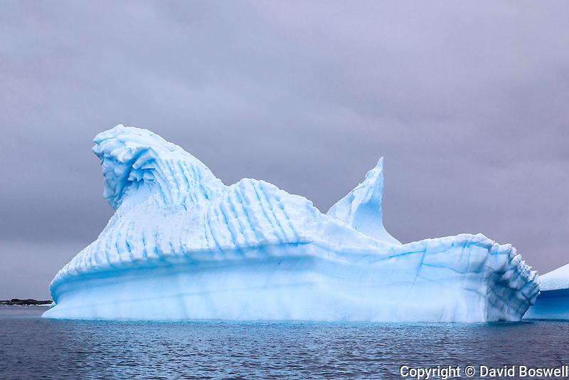 Surreal blue icebergs dot the seas surrounding the Antarctic Peninsula.