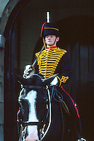 Mounted guard stands watch on his horse in 19th century uniform. military, horses, animals, occupations. Queen's Horse Guard. London England Great Britain Whitehall.