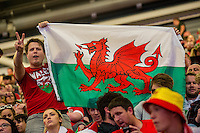 Man holds a Wales flag in the UEFA EURO 2016 fan zone set up in the Principality Stadium, Cardiff, Wales, Britain, 6 July 2016, watching Portugal vs Wales EURO 2016 semi-final match. Athena Picture Agency/ALED LLYWELYN/ATHENA PICTURES