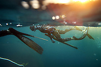 "SUMMARY - Spearfishing is a type of hunting done with underwater guns, harpoons and strong line. Freediving is a type of breath-hold diving in which divers descend for the duration of one breath, without any SCUBA tanks or any breathing apparatus. The best freedivers can hold their breath for over five minutes and go deeper than 100 feet. The combination of both these skills makes a high adrenaline sport done by only a few brave souls...THIS IMAGE - Ren Chapman prepares for a dive with a loaded and ready speargun while another diver rests, holding onto a dive-line to stay in position against the current.  ""Blood in the water - Predive"""