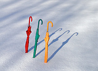 Germany - Winter Umbrellas in Snow, Creative, Spring Time, Frozen Trees,  Aerial