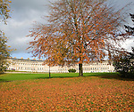 Autumn tree colours at The Royal Crescent, architect John Wood the Younger built between 1767 and 1774, Bath, Somerset, England