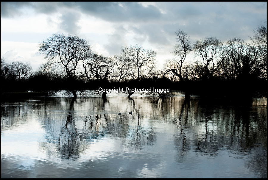 BNPS.co.uk (01202 558833)<br /> Pic: PhilYeomans/BNPS<br /> <br /> Flooded fields<br /> <br /> The River Stour at Christchurch, Dorset, broke its banks last night causing the Iford Bridge Home Park to be evacuated as 3 feet of flood water swept through.