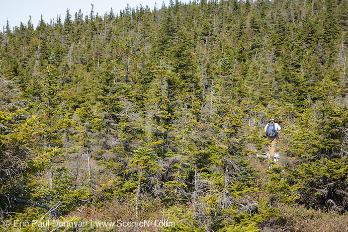 Hikers explore the summit of Whitewall Mountain in the White Mountains of New Hampshire USA