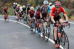 The breakaway including Sander Armee (BEL) Lotto-Soudal and Romain Bardet (FRA) AG2R group during Stage 11 of the 2017 La Vuelta, running 187.5km from Lorca to Observatorio Astron&oacute;mico de Calar Alto, Spain. 30th August 2017.<br />