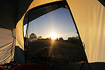 Faithful Dog Watching the Tent at Sunrise, Colorado, USA