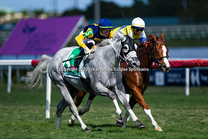 HALLANDALE BEACH, FL - JANUARY 25: Jean Elizabeth, #5, ridden by jockey Irad Ortiz, Jr., wins the Ladies Turf Sprint Stakes on January 25, 2020 at Gulfstream Park in Hallandale Beach, Florida. Kaz Ishida/Eclipse Sportswire/CSM