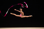 British Rhythmic Gymnastics Championships Seniors