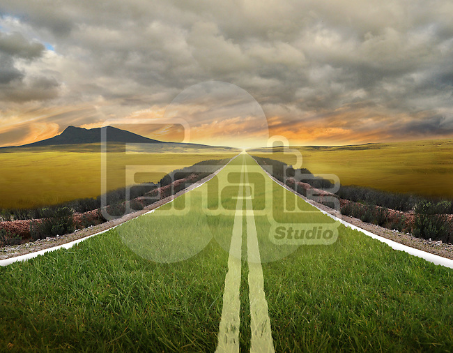 Illustrative image of grass growing on road representing go green concept