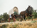 Days of '49 wagon train as they leave Cooper Vineyards in the rain, Shenandoah Valley, Calif.<br /> <br /> Diamond Jubilee commemoration of the founding of Amador County in 1854