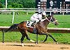 Takemetoneworleans winning at Delaware Park on 6/4/16