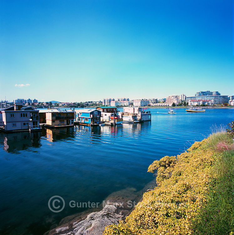 Victoria, BC, Vancouver Island, British Columbia, Canada - Floating Houses in Float Home Village, at Fisherman's Wharf in Victoria Harbour