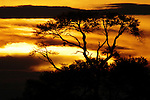 Sunset on the Zambezi River in Zimbabwe.
