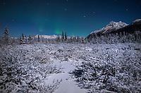 Aurora Borealis, Knik, Alaska.