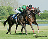 Miss Dayna Lee winning at Delaware Park on 6/1/13