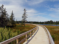 Boardwalk in Nova Scotia