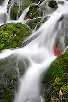 Falls Creek beautifully flows through Chugach National Forest en route to Cook Inlet just south of Anchorage, Alaska.