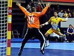23rd IHF Men's World Championship; FRA-BRA