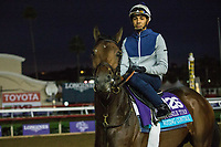 10-31-17 Breeders Cup Morning Workouts