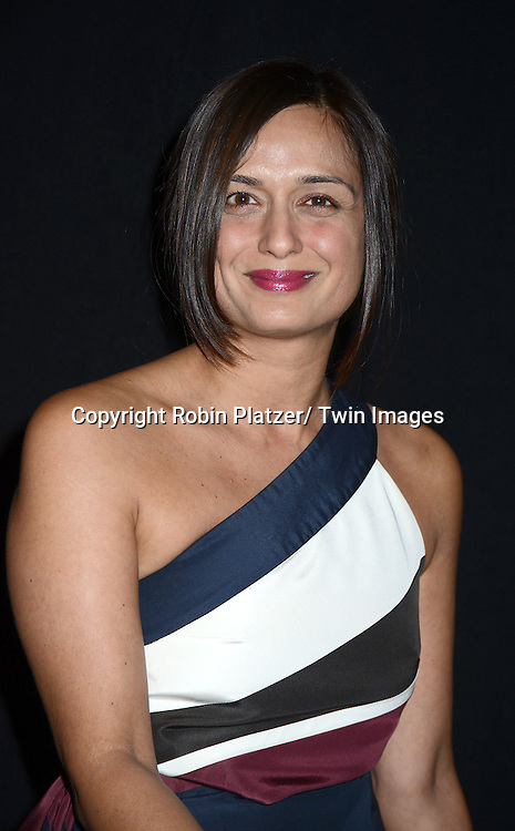 Rupa Patel attends the 2013 Whitney Gala & Studio party honoring artist Ed Ruscha on October 23, 2013 at Skylight at Moynihan Station in New York City.