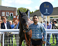 Winner of The M J Church Novice Stakes, Aluquair with Lad in the Winner's enclosure during Horse Racing at Salisbury Racecourse on 15th August 2019
