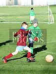 Drogheda Boys Lee O'Driscoll Termonfeckin Green Micheal McGinty. Photo:Colin Bell/pressphotos.ie
