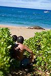 people watching a Hawaiian Monk Seal on the beach at Ka'anapali, Maui, Hawaii