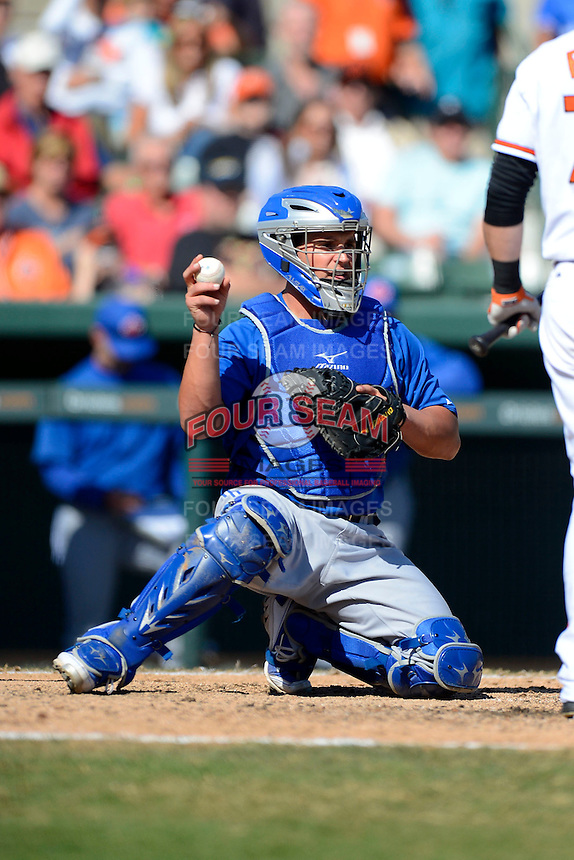 Toronto Blue Jays catcher Sean Ochinko #69 during a Spring Training game against the Baltimore Orioles at Ed Smith Stadium on March 7, 2013 in Sarasota, Florida.  Balitmore defeated Toronto 11-10.  (Mike Janes/Four Seam Images)