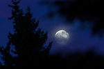 2014 Full Moon