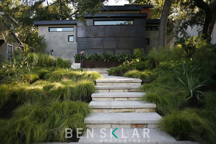 Mark Word designed a terraced garden in front of an new urban constructed house in Austin, Texas. The area contains native plant life and materials like Beautyberry plants and Limestone leuders. Photographed on Wednesday, August 14, 2008.