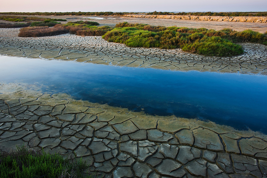 Canal with drought patterns near Etang du Fangassier, Camargue, France