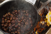 Chestnuts roasted on an open fire at the Winter in the Wissahickon event hosted by the Friends of the Wissahickon on December 1. (Dave Tavani/for NewsWorks)